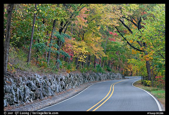 Rood, stone wall, fall colors, West Mountain. Hot Springs National Park (color)