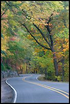 Rood, curve, fall colors, West Mountain. Hot Springs National Park, Arkansas, USA.