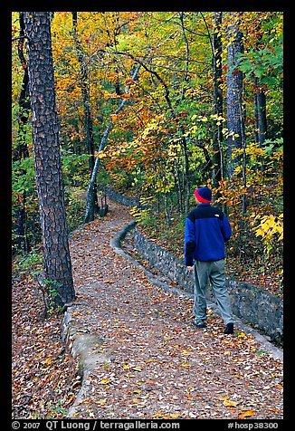 Hiker on trail amongst fall colors, Hot Spring Mountain. Hot Springs National Park, Arkansas, USA.