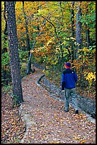 Hiker on trail amongst fall colors, Hot Spring Mountain. Hot Springs National Park, Arkansas, USA. (color)