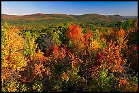 Vista with trees in fall colors, North Mountain, early morning. Hot Springs National Park, Arkansas, USA.