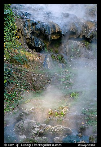 Steam rising from hot water cascade. Hot Springs National Park, Arkansas, USA.