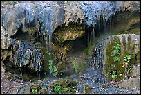 Hot water flowing over tufa terrace. Hot Springs National Park, Arkansas, USA. (color)