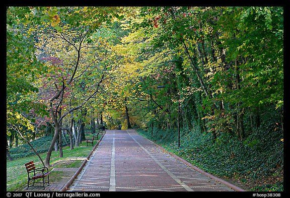 Grand Promenade in the fall. Hot Springs National Park (color)
