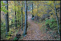 Trail and trees in fall colors, Gulpha Gorge. Hot Springs National Park, Arkansas, USA.