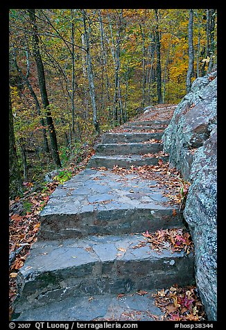 Stone steps on trail in forest with fall foliage, Gulpha Gorge. Hot Springs National Park (color)