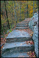 Stone steps on trail in forest with fall foliage, Gulpha Gorge. Hot Springs National Park, Arkansas, USA.
