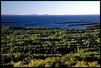 View from Mount Franklin. Isle Royale National Park, Michigan, USA. (color)