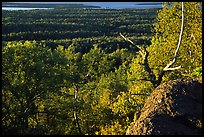 View over forests from Mount Franklin. Isle Royale National Park, Michigan, USA.