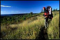 Backpacker pausing on Greenstone ridge trail. Isle Royale National Park, Michigan, USA.