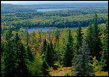 Lakes and forest. Isle Royale National Park, Michigan, USA. (color)