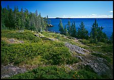 Rock Harbor lakeshore. Isle Royale National Park, Michigan, USA.