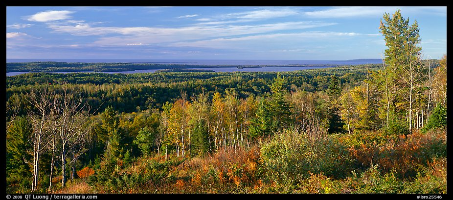 Fall landscape with forest stretching to lakeshore. Isle Royale National Park (color)
