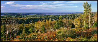 Fall landscape with forest stretching to lakeshore. Isle Royale National Park (Panoramic color)