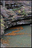 Styx river spring resurgence. Mammoth Cave National Park ( color)