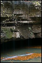 Water drips over limestone ledges and Styx. Mammoth Cave National Park, Kentucky, USA. (color)