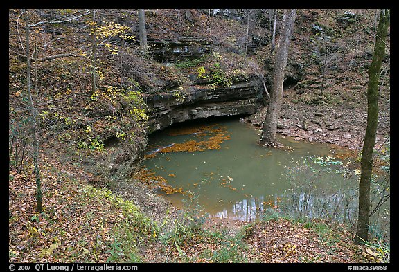 Styx river resurgence in autumn. Mammoth Cave National Park (color)