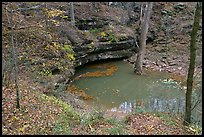 Styx river resurgence in autumn. Mammoth Cave National Park, Kentucky, USA.
