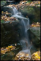 Stream, boulders, and fallen leaves. Mammoth Cave National Park, Kentucky, USA. (color)