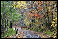 Trail leading to historic cave entrance in the fall. Mammoth Cave National Park, Kentucky, USA.