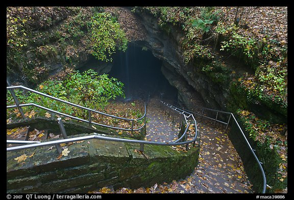Steps and handrails leading down to cave. Mammoth Cave National Park (color)