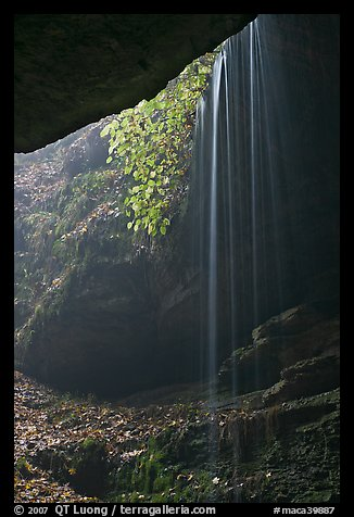 Ephemeral waterfall seen from inside cave. Mammoth Cave National Park, Kentucky, USA.