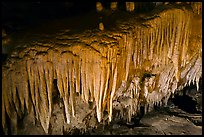Flowstone detail, Frozen Niagara. Mammoth Cave National Park, Kentucky, USA. (color)