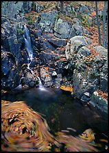 Cascade and circle of fallen leaves in motion. Shenandoah National Park, Virginia, USA.
