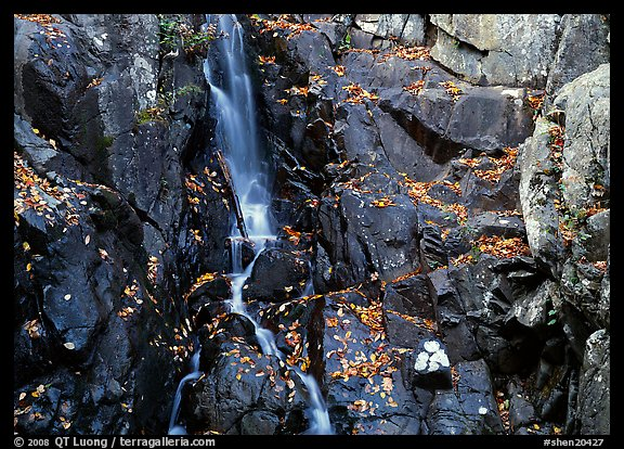 Stream cascading over dark rock in autumn. Shenandoah National Park (color)