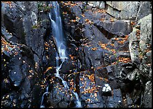 Stream cascading over dark rock in autumn. Shenandoah National Park, Virginia, USA. (color)