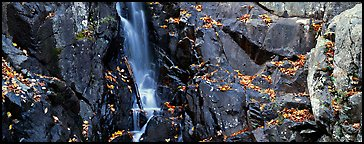Cascade over dark rocks sprinkled with fallen autumn leaves. Shenandoah National Park (Panoramic color)
