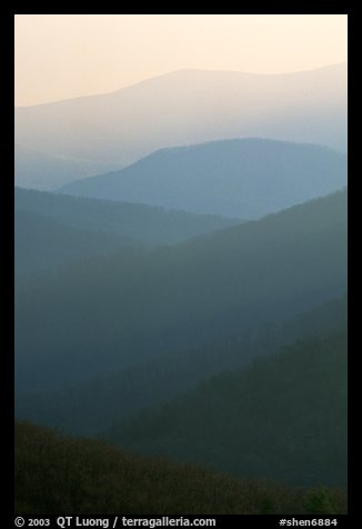 Receding ridges seen from Little Stony Man, sunrise. Shenandoah National Park (color)