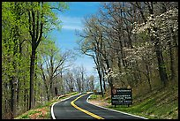 Skyline drive with Park entrance sign. Shenandoah National Park, Virginia, USA. (color)