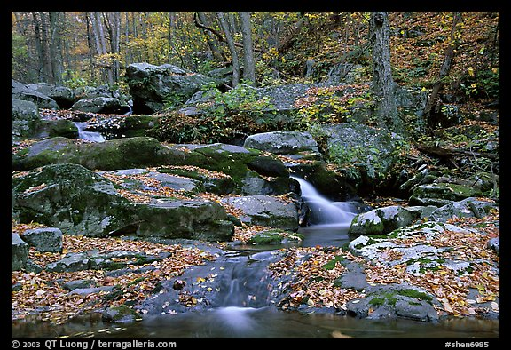 Hogcamp Branch of the Rose River. Shenandoah National Park (color)