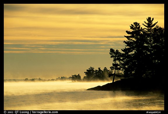 Fog lifting up in early morning and trees on shore of Kabetogama lake. Voyageurs National Park, Minnesota, USA.