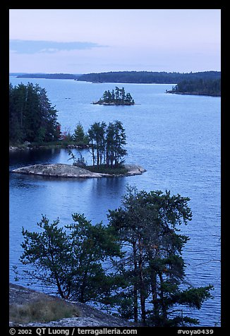 Islets and conifers, Anderson bay. Voyageurs National Park (color)