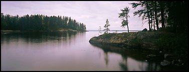 Forested cove. Voyageurs National Park (Panoramic color)