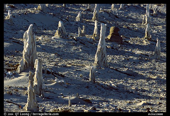 Petrified stumps of caliche, San Miguel Island. Channel Islands National Park (color)