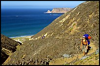 Backpacker going up Nidever canyon trail, San Miguel Island. Channel Islands National Park, California, USA.