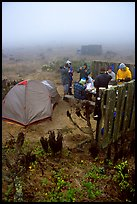 Campers in fog, San Miguel Island. Channel Islands National Park, California, USA.