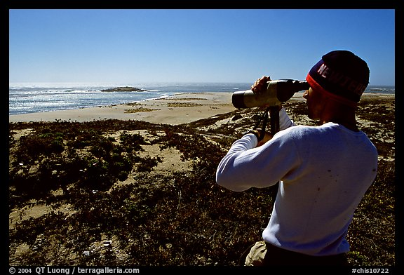 Looking at  marine wildlife at Point Bennett, San Miguel Island. Channel Islands National Park (color)