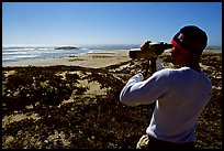 Looking at  marine wildlife at Point Bennett, San Miguel Island. Channel Islands National Park, California, USA.