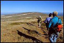 Hikers on  trail to Point Bennett, San Miguel Island. Channel Islands National Park, California, USA. (color)