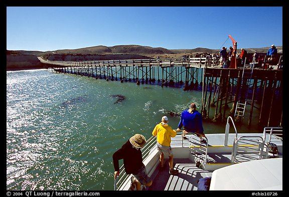 Bechers bay pier, Santa Rosa Island. Channel Islands National Park (color)