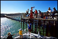 Approaching Bechers Bay pier, Santa Rosa Island. Channel Islands National Park, California, USA.