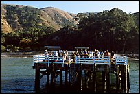 Pier at Prisoners Harbor, Santa Cruz Island. Channel Islands National Park, California, USA. (color)