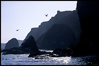 Steep cliffs, East Anacapa. Channel Islands National Park, California, USA. (color)