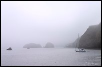Yacht moored in Scorpion Anchorage in  fog, Santa Cruz Island. Channel Islands National Park, California, USA.
