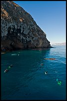 Scuba divers in cove below cliffs, Annacapa island. Channel Islands National Park, California, USA.