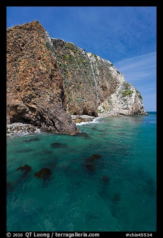 Kelp and cliff, Scorpion Anchorage, Santa Cruz Island. Channel Islands National Park, California, USA.